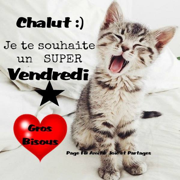 Bonjour Et Bisous Du Matin Blog De Lamadonebleue