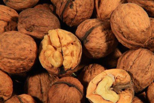 Manger des noix réduit le taux de cholestérol
