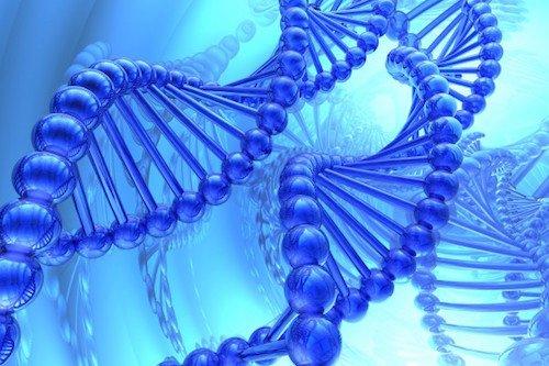 Un nouveau test sanguin utilise l'ADN pour détecter de nombreuses maladies