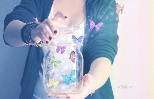 Schmetterlinge..