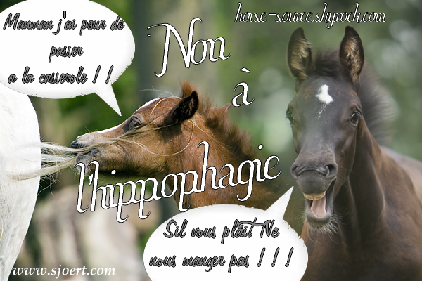 _Non à l'hippophagie _