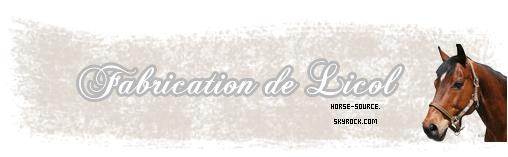 _Fabrication de Licol ethologique _