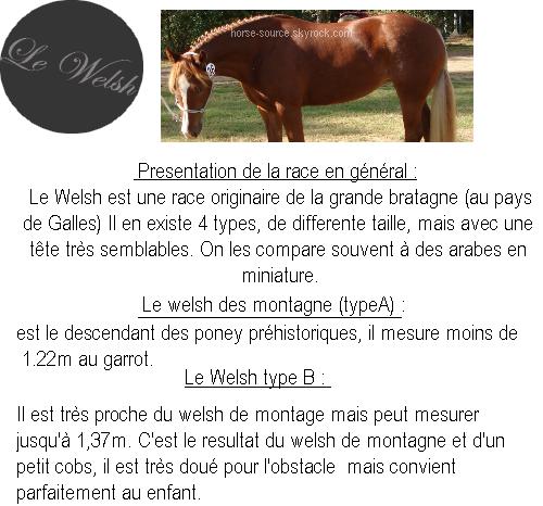 _  Le Welsh  _
