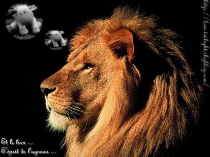 Et le Lion s'éprit de l'agneau ...