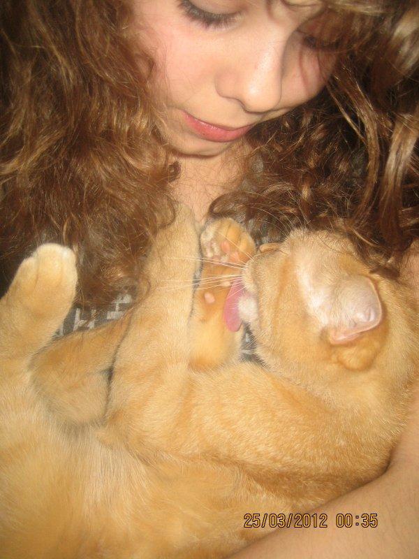 ~Mon chat.