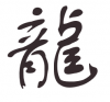 je vous souhaite un JOYEUX NOUVEL AN CHINOIS (avec pas mal de retard) !!!