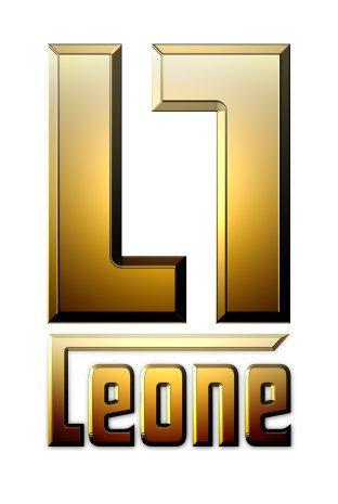 Bonjour et Bienvenue sur le blog Leone Gang !!!