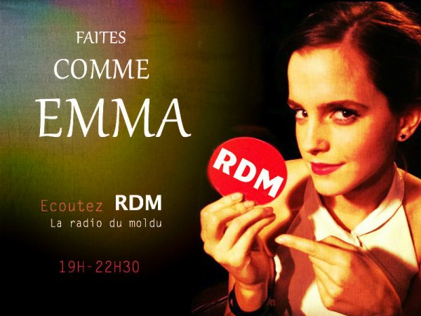 RDM -Equipe Wizarding Créations