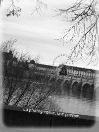 Photographie. ♥ ℒℴѵℯ