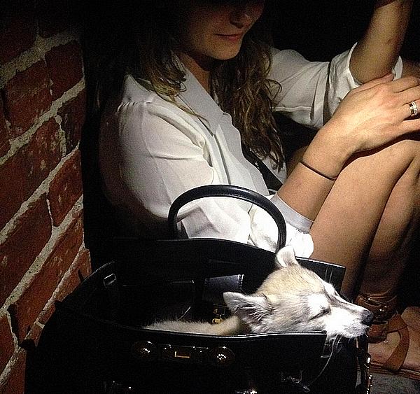 Découvrez une nouvelle photo de Nina postée sur son Twitter ce 29 octobre 2014.