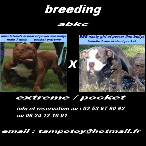 breeding aout 2012