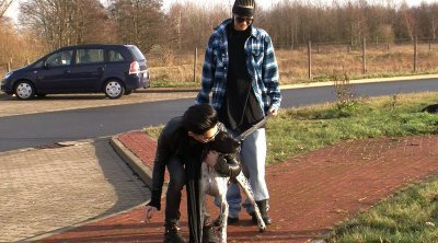 Les chiens de Bill et Tom