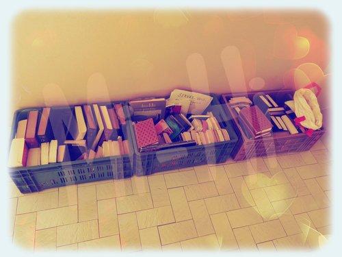 Quand la foire aux livres vient chez soi ! ^_^