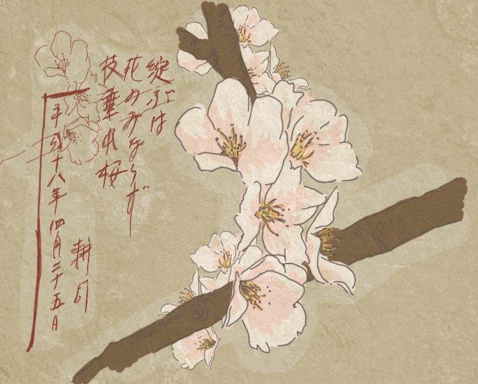 *- Si Sasuke ne voulait pas de Sakura, leurs vies seraient tellement plus banales... -*
