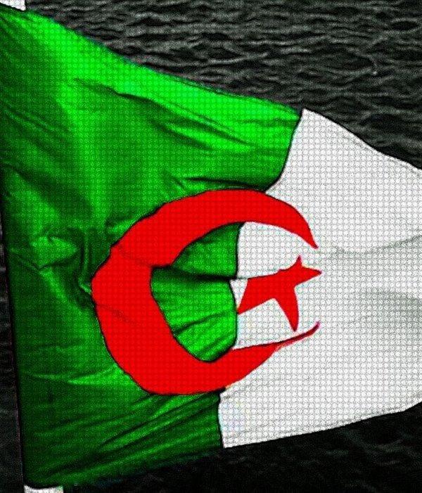 drapaux algerienne