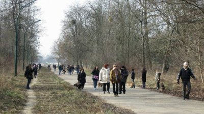 Ballade au bois de Vincennes