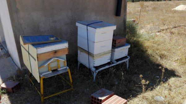 Achat de deux nouveaux ruches: O2 et O3