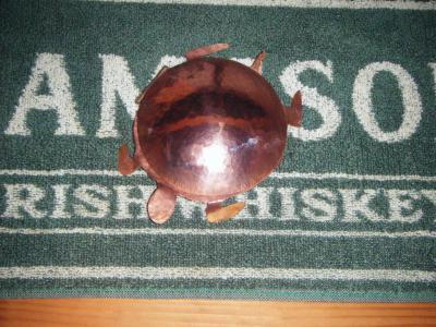 tortue en cuivre