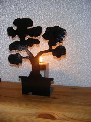 bougoire arbre japonnais