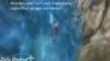 Montages plongée sous-marine + Nouveautés de SSO