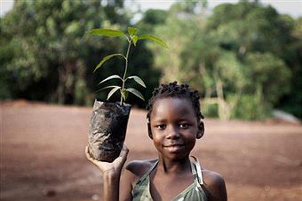 National Tree Planting Day in Kenya