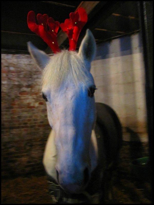 SAMEDI 4 DECEMBRE 2010