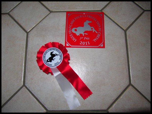 DIMANCHE 27 FEVRIER 2011 : CSO ENTRAINEMENT COMPIEGNE