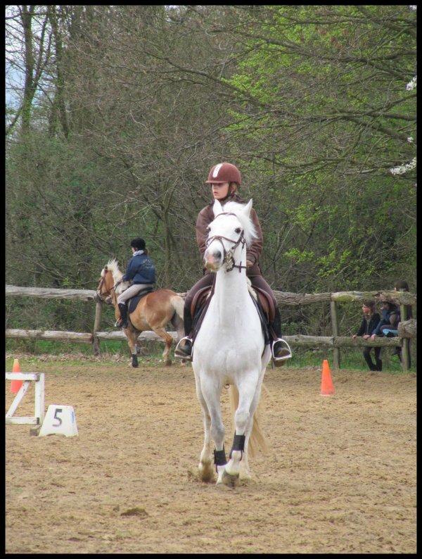 DIMANCHE 03 AVRIL 2011 : CHALLENGE INTERNE    SPECIALE PROGRESSIVE AVEC JOKER