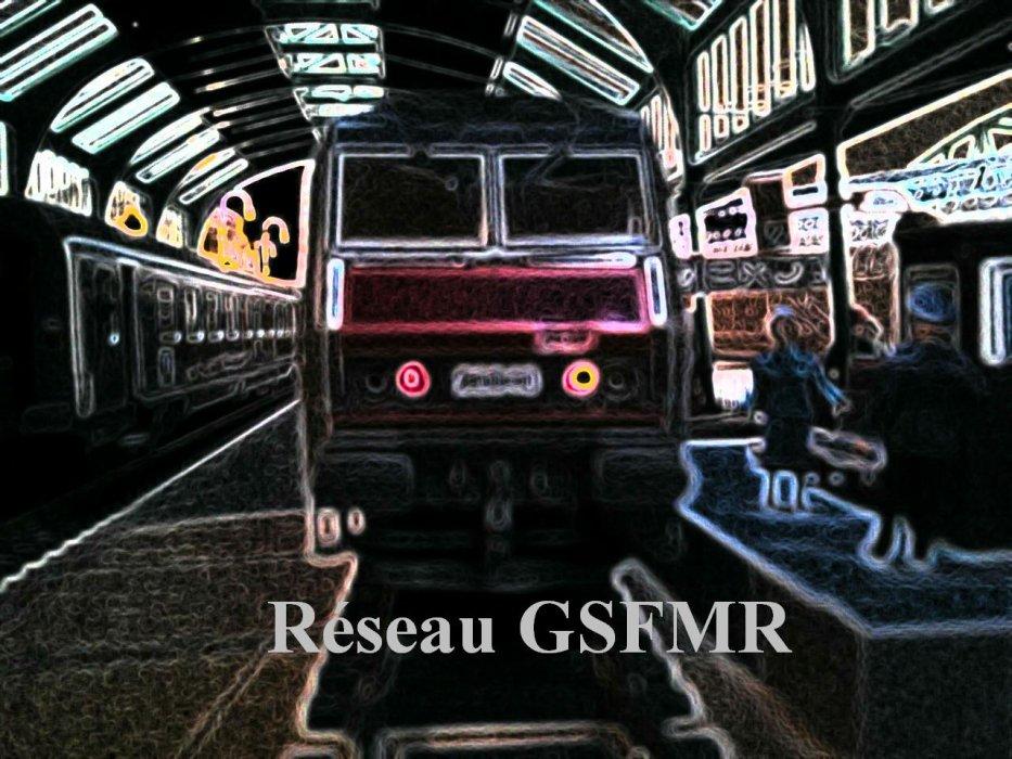 Le Réseau GSFMR