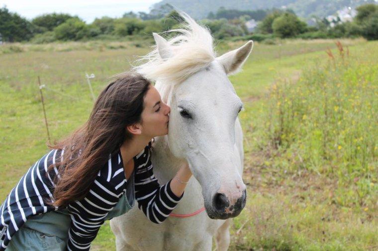 """"""" Vous ne pouvez demander a n'importe qui de devenir votre ami... le cheval il suffit simplement de le lui demander... mais demandez le lui vraiment."""" Ray Hunt."""