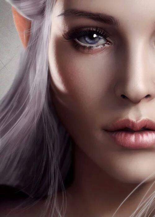fiction n°14: La dernière des elfes