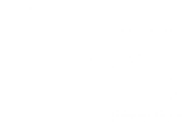 M-DO Concepto
