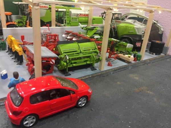 Expo Dirinon 2017