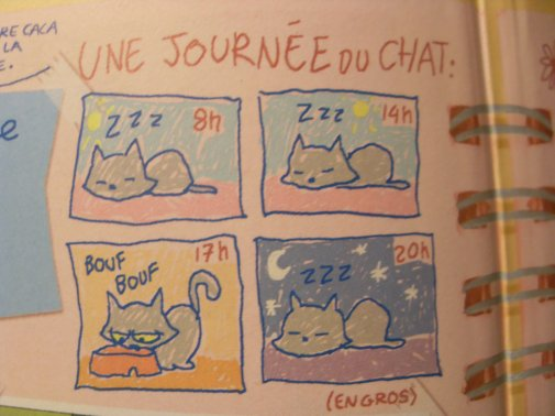 Personnage : Le chat