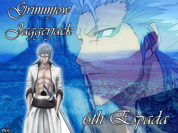 Grimmejow    Jaggerjack    n°6