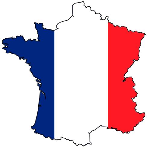 Le français est la langue très majoritairement parlée en France, et est officiellement « la langue de la République » depuis la loi constitutionnelle de 1992. La France est le deuxième pays francophone le plus peuplé du monde, après la République démocratique du Congo, mais le premier en termes de locuteurs. La France mène une politique linguistique active en faveur du français. Celle-ci peut être visible entre autres au sein de l'Organisation internationale de la francophonie dont la France fait partie de même qu'au sein de l'Assemblée parlementaire de la francophonie dont la France fait aussi partie. Les villes du Havre, Lyon, Strasbourg, Bordeaux, Lille, Marseille, Nantes, Paris, Saint-Denis de La Réunion, Tours, les villes associées d'Angoulême, Nice et Poitiers, les membres associés que sont la communauté d'agglomération Évry Centre Essonne et Bordeaux Métropole de même que l'Association des communes et collectivités d'Outre-Mer sont membres de l'Association internationale des maires francophones. Selon un rapport du linguiste Bernard Cerquiglini 1999, soixante-quinze langues autres que le français sont parlées en France, en comptant les langues régionales, les langues issues de l'immigration et les dialectes parlés dans l'outre-mer.