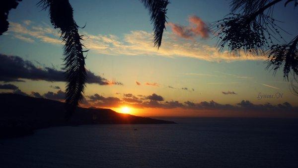- Le soleil me transporte, c'est une des seules choses que mes yeux ne pourrons se lacer. -