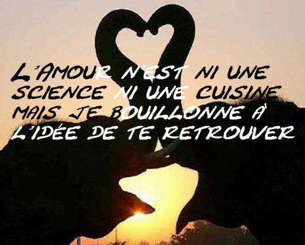 L'Amour n'est ni une science ni une cuisine mais je bouillonne à l'idée de te...
