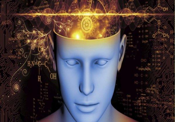 Le temps passe plus vite quand on sait occuper son esprit