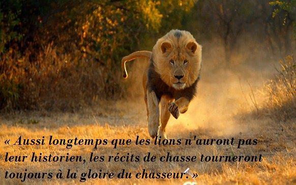 « Aussi longtemps que les lions n'auront pas leur historien, les récits de chasse tourneront toujours à la gloire du chasseur. »
