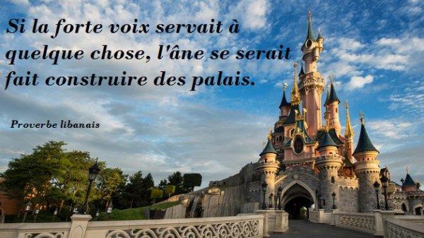 Si la forte voix servait à quelque chose, l'âne se serait fait construire des palais.