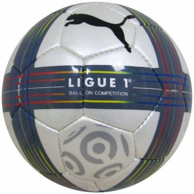 ballon de ligue1 saison 2010/2011