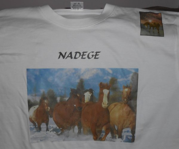 Lot de tee shirts PERSONNALISES 10 EUROS