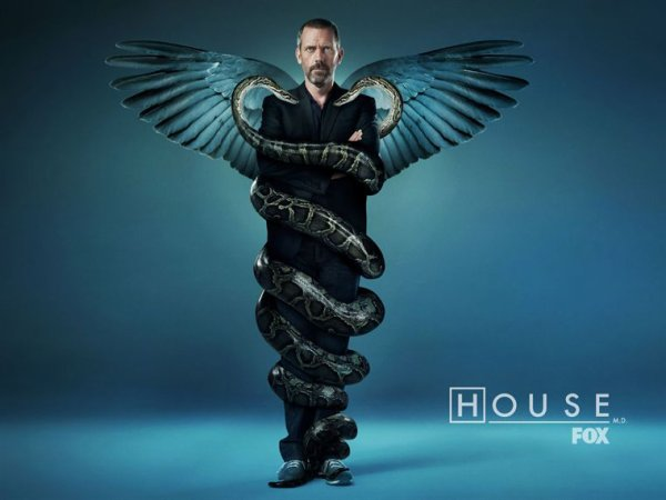 Dr HOUSE (Saison 7)
