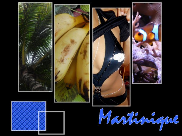 Martinique ♥ Le Bon (Y)