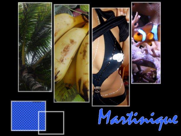 Martinique ♥ Le Bon (Y)