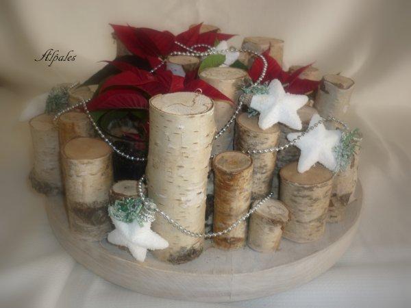 En attendant Noël ( Poinsettia)
