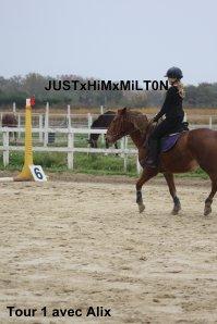 Dimanche 07/11/2o1o : Mon premier concours, sur Milton ♥