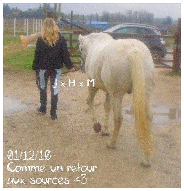 Mercredi 1er décembre 2010 → Comme un retour aux sources ♥