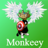 monkeey-fun